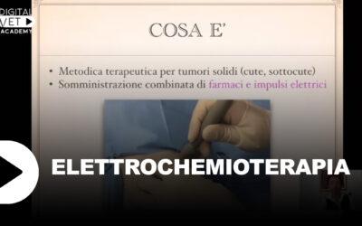 Elettrochemioterapia