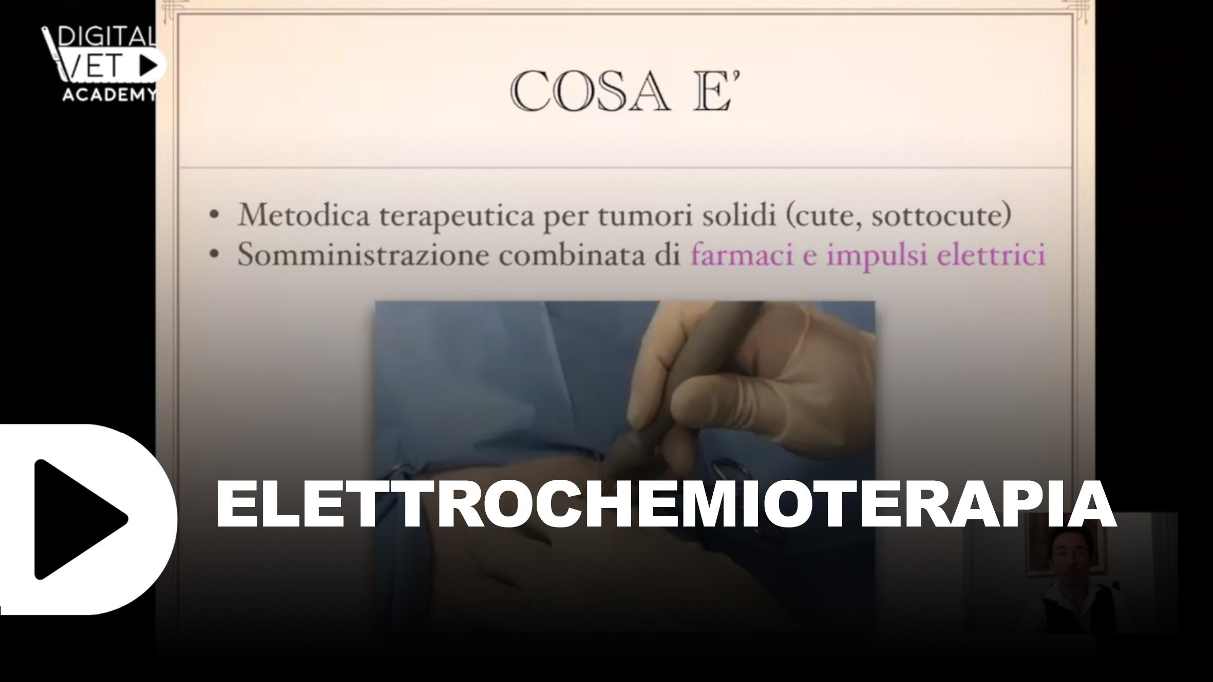 thumb-video-vet-Elettrochemioterapia