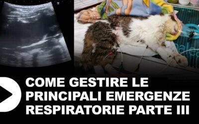 Le emergenze respiratorie parte 3