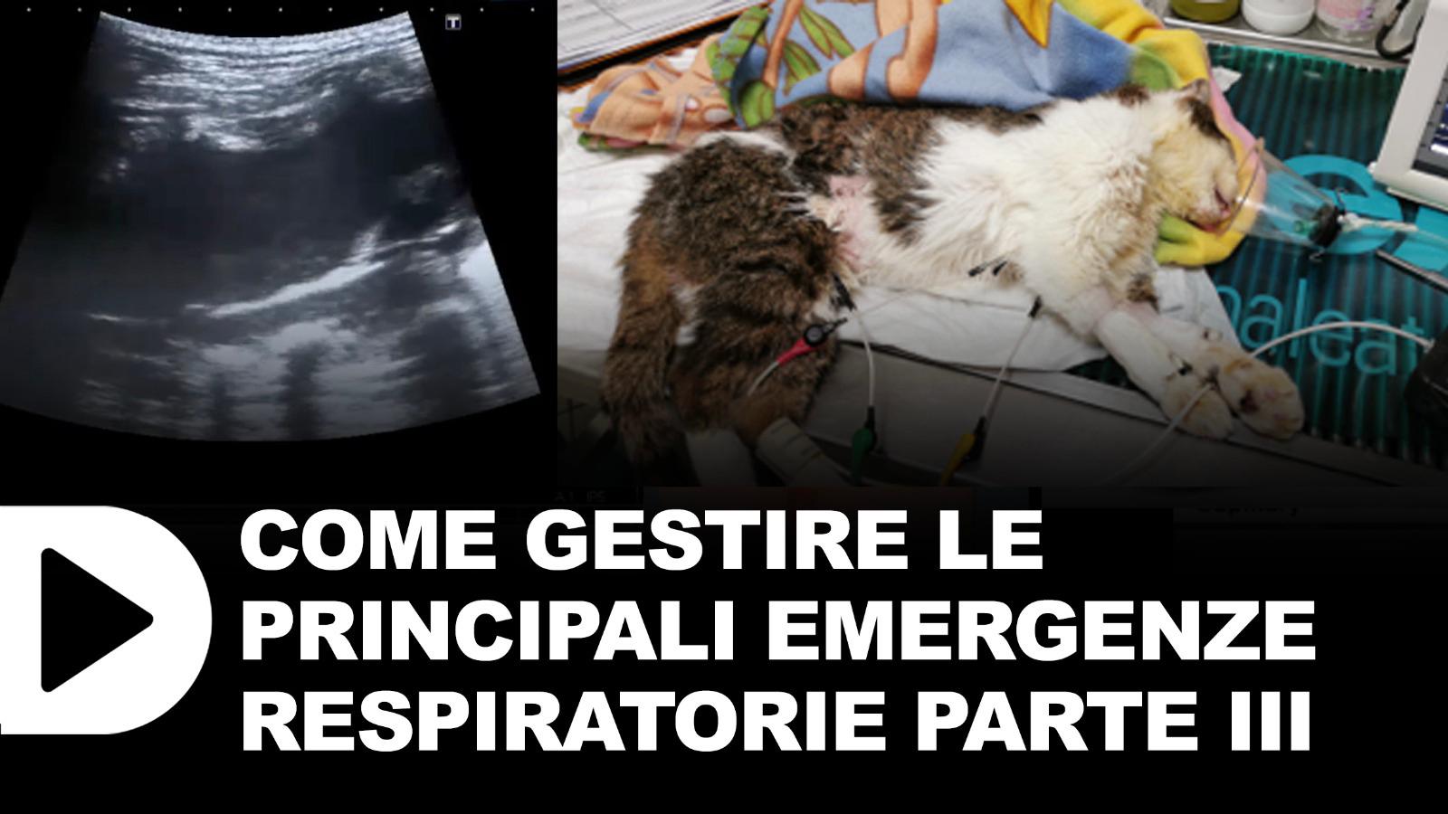 Le-emergenze-respiratorie-3