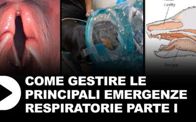 Le emergenze respiratorie parte 1