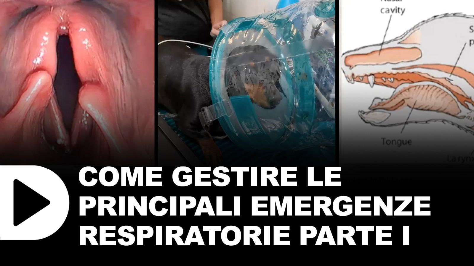 Le-emergenze-respiratorie