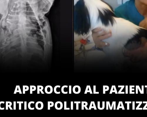 Approccio al paziente critico politraumatizzato parte uno